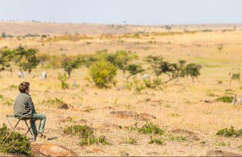 familie safari